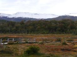 002 NP Tierra del Fuego