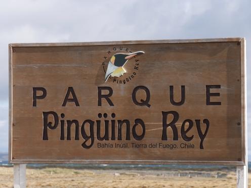 001 Parque Pingüino Rey