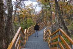 002 am Perito Moreno Glaciar