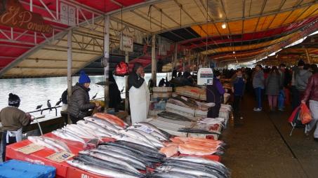 Mercado Valdivia (3)