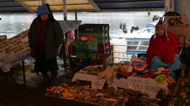 Mercado Valdivia (5)