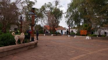 001 San Pedro de Atacama