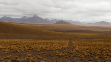 060 Ruta del Desierto