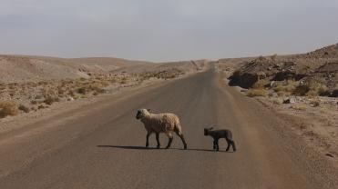 083 Ruta del Desierto