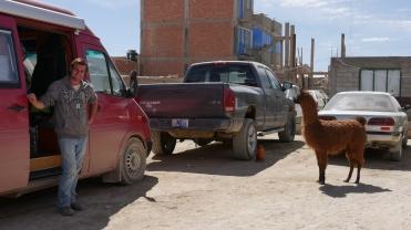 003-thomas-rudolph-llama