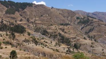 004-cochabamba-oruro