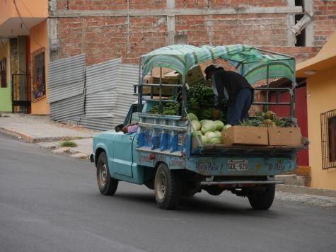 002-fruchte-transport