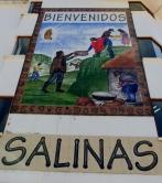 002-salinas