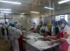 002-schokoladenfabrik-salinas