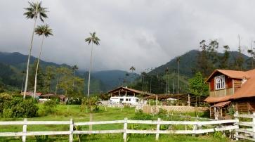 002 Valle del Cocora