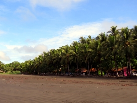 004 Oasis Surf Camp