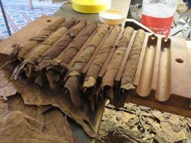 004 Mombacho Cigars