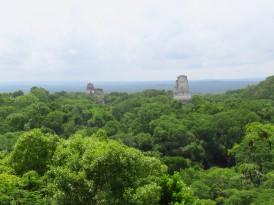 001 Maya Ruinen Tikal