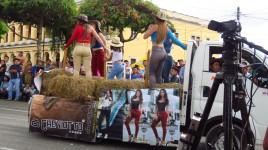 015 Fiesta Cobán