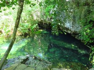 001 Cenote Cristalino