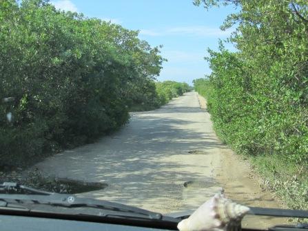 001 Strasse nach Chuburná Puerto
