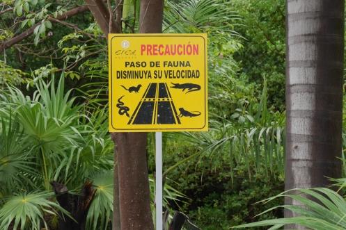 003 Ausflug nach Puerto Morelos