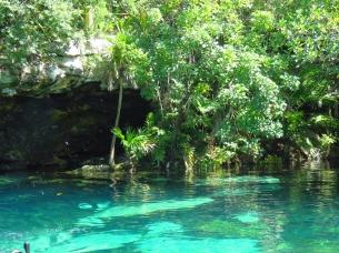 003 Cenote Cristalino