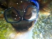 010 Cenote Cristalino