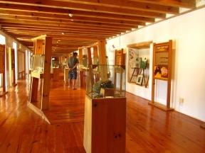 001 Museo del Ámbar de Chiapas