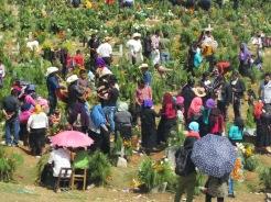 005 Friedhof in Chamula
